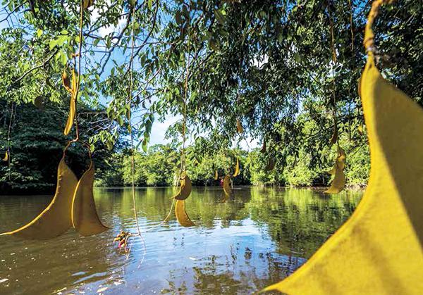 fleuve-guyane-robinsonnades-amazoniennes
