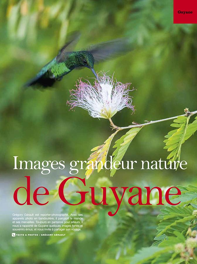 guyane-image-grandeur-nature-faune-flore-arc-en-ciel-76