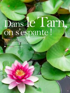 sortie-magazine-arc-en-ciel-82-visuel-occitanie-dans-le-tarn-on-sespante