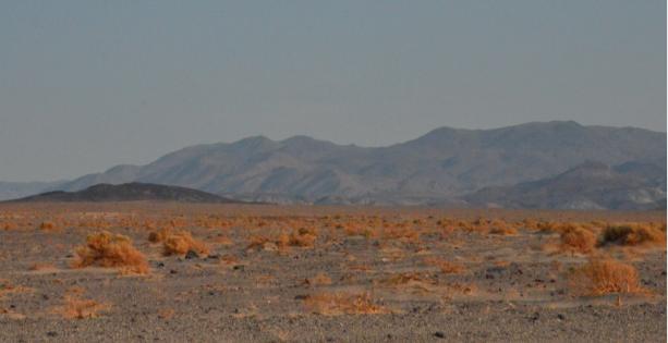 Désert du Mojave