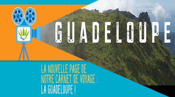 Guadeloupe le film
