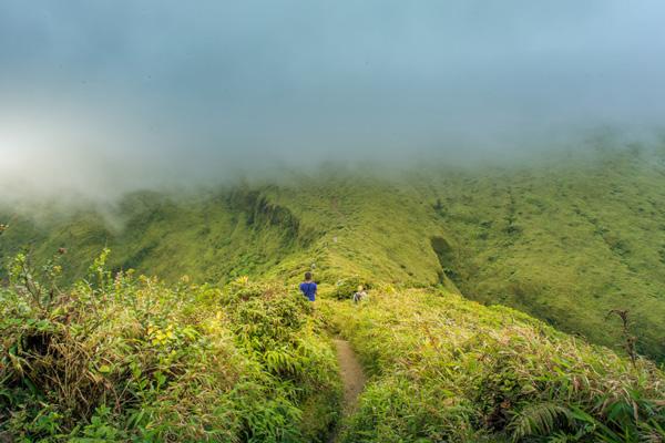 Meilleure randonnée en Martinique